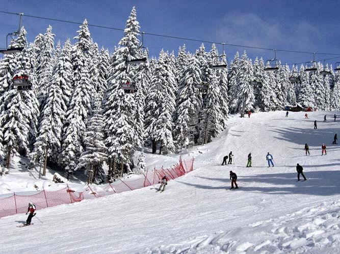 Kopaonik-ski
